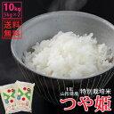【白米】令和1年山形県産特別栽培米つや姫 10kg(5kg×2)【自社精米工場直送】【送料無料】