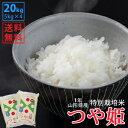 【白米】令和1年山形県産特別栽培米つや姫 20kg(5kg×4)【自社精米工場直送】【送料無料】