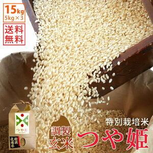 【玄米】令和1年山形県産特別栽培米つや姫 15kg(5kg×3)【自社精米工場直送】【送料無料】
