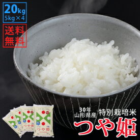【白米】30年山形県産特別栽培米つや姫 20kg(5kg×4)【自社精米工場直送】【送料無料】