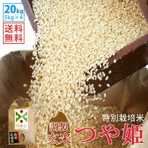 【玄米】令和2年山形県産特別栽培米つや姫 20kg(5kg×4)【自社精米工場直送】【送料無料】