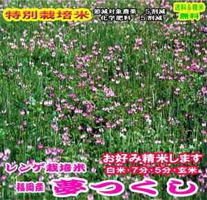 令和元年産 福岡産れんげ栽培米夢つくし特別栽培米 特A 送料無料 精米9kg or 玄米10kg九州のお米