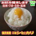 玄米 新米 米 10kg コシヒカリ 福井県産 令和2年産 送料無料お米 分つき米