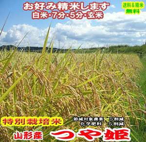 令和元年 玄米 米 10kgつや姫 山形県産 特別栽培米 産 送料無料お米 分つき米