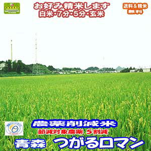 分づき米 玄米 減農薬 米 5kgつがるロマン 青森県産 減化学肥料米 令和元年産 送料無料お米