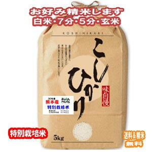 新米 令和2年産 分つき米 玄米 減農薬 米 5kgコシヒカリ 熊本県産 特別栽培米 送料無料お米 九州のお米