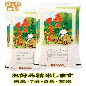 新米 分つき米 玄米 米 10kg熊本県産 森のくまさん 令和元年産 送料無料お米 九州のお米