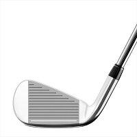 テーラーメイドゴルフ(TaylorMadeGolf)M2アイアンカーボンシャフト2019/REAX17カーボン【単品】