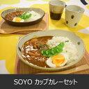 SOYO カップ&カレー皿ペアギフトセット(カレー皿/カップ/スプーン/マット) 05P01Oct16