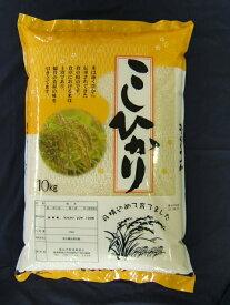 【送料無料】30年産 こしひかり (長野県産)10kg【同梱可能】
