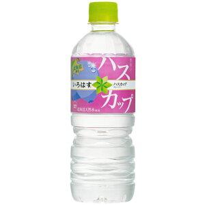 い・ろ・は・す ハスカップ 555mlPET×24本 北海道限定 コカ・コーラ直送商品以外と 同梱不可 【D】【サイズE】