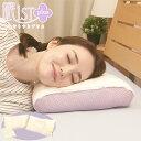 【特別価格】西川 眠りすとプラス/2個セット/【特典】洗濯ネット1枚付き【TBSショッピング】