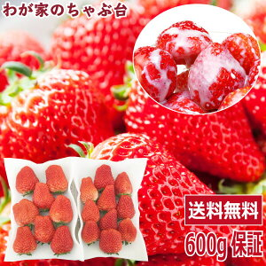 イチゴ農家さんからの直送品紅ほっぺ 完熟大粒サイズ2パック〜国産 いちご イチゴ 無添加 送料無料 ストロベリー 無添加 無加糖 フルーツ 果物 くだもの ジャム