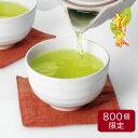 ティーライフのまかない新茶(2019)ポット用100個入新茶 緑茶 まかない 静岡茶 お茶屋 カテキン 送料無料