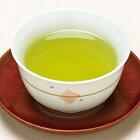 緑茶 やすらぎパック ポット用100個入 日本茶 静岡茶 深蒸し茶 ティーライフ