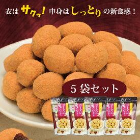 120円引き!! レーズンきなこ 5袋セット 干しぶどう 葡萄 レーズン 黄な粉 黄粉 きなこ 和菓子 お菓子