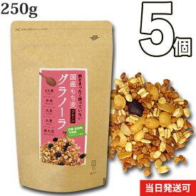 【送料無料】小川生薬 めぐりあう恵み 国産もち麦グラノーラ(プレーン) 国産 250g 5個セット