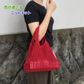 アプリコで編むなつめ模様のバッグ エコバッグ 手編みキット ハマナカ 編み図 編みものキット 人気キット