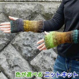 野呂英作のくれよんで編む簡単指なし手袋 手編みキット 人気キット 編み図 編みものキット