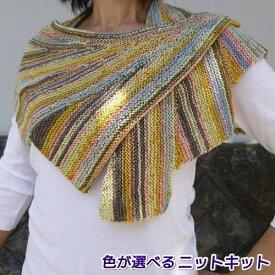 ベルンド・ケストラーさんデザイン!ナイフメーラで編むウイングレットショール 手編みキット ナスカ 内藤商事 人気キット 編み図 編みものキット