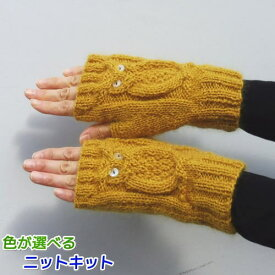 ドミナノームで編むフクロウの指なし手袋 手編みキット ダイヤモンド毛糸 人気キット 動物 編み図 編みものキット