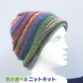 ドミナで編む2色使いのねじり帽子&スヌード 手編みキット ダイヤモンド毛糸 人気キット 編み図 編みものキット OH