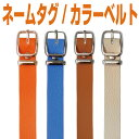 Tg belt color 1