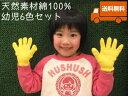 カラー軍手[幼児6色セット]【今治タオルの糸】綿100%日本製送料無料【キャッシュレス5%還元】