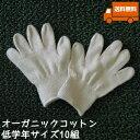 オーガニックコットン手袋[小学校低学年]10組セット日本製【今治タオルの糸】送料無料【キャッシュレス5%還元】