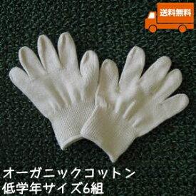オーガニックコットン手袋[小学校低学年]6組セット日本製【今治タオルの糸】送料無料