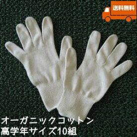 オーガニックコットン手袋[小学校高学年]10組セット日本製【今治タオルの糸】送料無料