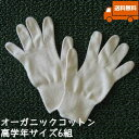オーガニックコットン手袋[小学校高学年]6組セット日本製【今治タオルの糸】送料無料
