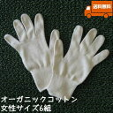 オーガニックコットン手袋[女性]6組セット日本製【今治タオルの糸】送料無料【キャッシュレス5%還元】