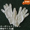 オーガニックコットン手袋[男性]6組セット日本製【今治タオルの糸】送料無料【キャッシュレス5%還元】