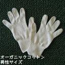 オーガニックコットン手袋[男性]日本製【今治タオルの糸】【キャッシュレス5%還元】