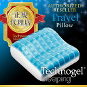 Travelpillow1