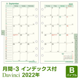 【2020年版リフィル Davinci】【メール便対象】システム手帳 リフィル 2020年版 ダ・ヴィンチ バイブル 月間-3 見開き両面1ヶ月 1月/4月始まり両対応 (DR2020)