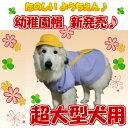 【犬 服】 幼稚園 帽子 日本製 犬用 黄色帽 幼稚園服 超大型犬 グレートピレニーズ バーニーズ ハロウィン インスタ映え【RCP】