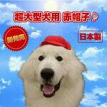 【犬服】運動会帽子日本製赤帽子超大型犬グレートピレニーズバーニーズハロウィンインスタ映え【RCP】