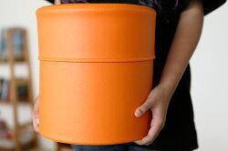 【送料無料】PVCレザーゴミ箱「pinoco」【ゴミ箱ごみばこごみ箱ゴミ箱ダストボックスゴミ箱おしゃれゴミ箱おしゃれおもちゃ入れゴミ箱リビングゴミ箱スリムゴミ箱キッチン】