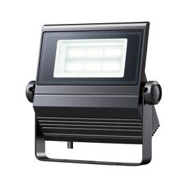 岩崎電気 ECF0685D/SA1/2/2.4/DG (ECF0685DSA1224DG) レディオック フラッドネオ60W 超広角 昼光色 (6500K) ダークグレイ
