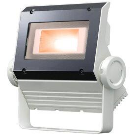 【ポイント2倍】 岩崎電気 ECF0495L/SAN8/W (ECF0495LSAN8W) LED投光器 40クラス (旧60W) 超広角タイプ 電球色タイプ