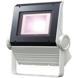 【ポイント2倍】 岩崎電気 ECF0695VW/SAN8/W (ECF0695VWSAN8W ) LED投光器 美vid 白色タイプ 60クラス (旧80W)(超広角タイプ)