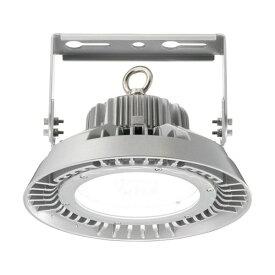 【ポイント2倍】 岩崎電気 EHWP10010W/NSAN9 (EHWP10010WNSAN9) LED高天井用照明 100W 水銀ランプ250W・300W相当/メタルハライドランプ250W相当 クラス1000 広角タイプ