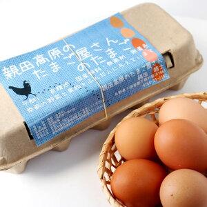 親田高原(青見平)のたまご屋さんのたまご〔自然卵〕10個パック
