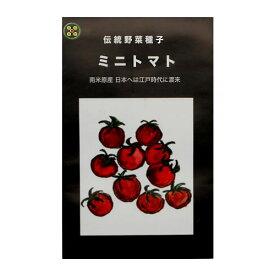 在来種/固定種/野菜のタネ「ミニトマト0.2m約50粒」畑懐〔はふう〕の種【メール便可】