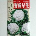 在来種/固定種/野菜のタネ「野崎早生カリフラワー1ml約270粒」畑懐〔はふう〕の種【メール便可】