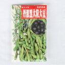 在来種/固定種/野菜の種「丹波黒大粒大豆」60ml約60粒畑懐〔はふう〕