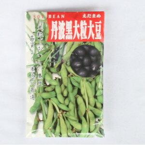 在来種/固定種/野菜のタネ「丹波黒大粒大豆60ml約60粒」畑懐〔はふう〕の種【メール便可】