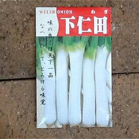 在来種/固定種/野菜のタネ「下仁田ネギ 5ml 約700粒」畑懐〔はふう〕の種【メール便可】